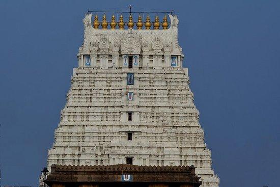 Ảnh về Kanchipuram Athi Varathar Raising 2019 - 1 day visit