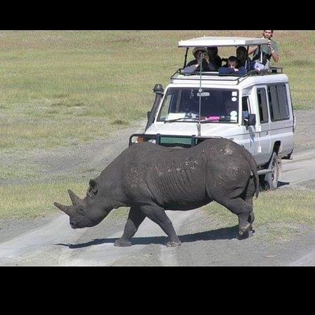 Waxbill Safaris