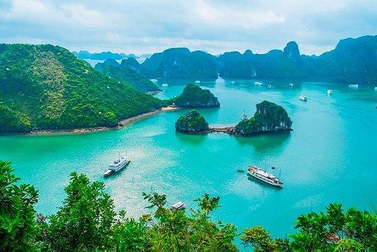 תמונה מHalong Bay Cruise - Full Day Tour From Cai Lan Port