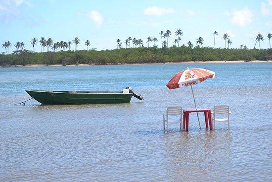 Praia do Forte SUV-strandhoppingstur på Camaçari-kysten