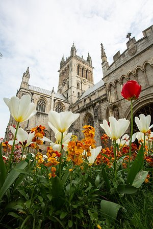 The Abbey in spring time.