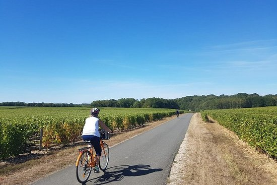 Loire Valley Self-Ride El-Bike Tour fra Amboise: Amboise & Vouvray...