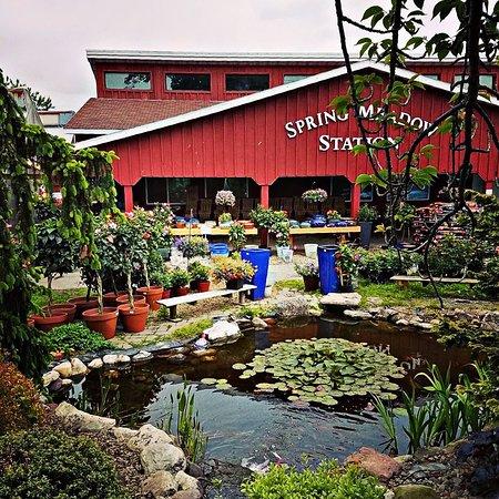 Spring Meadow Station Farm Zoo