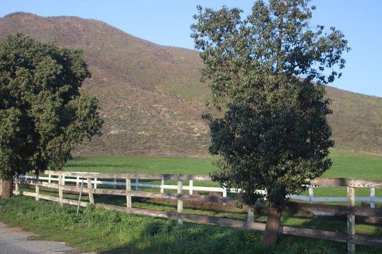 Winchester, Kalifornia: We walked and had fun!