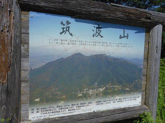tsukubasan12