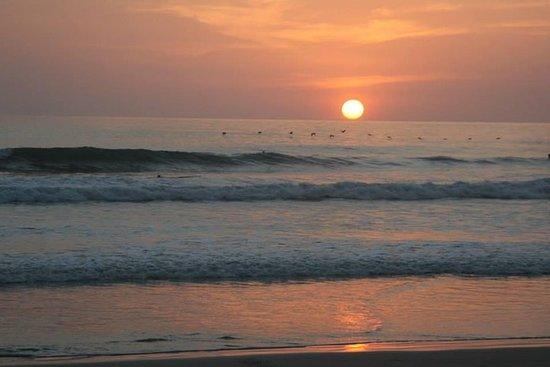 Surf et aventure à Santa Teresa
