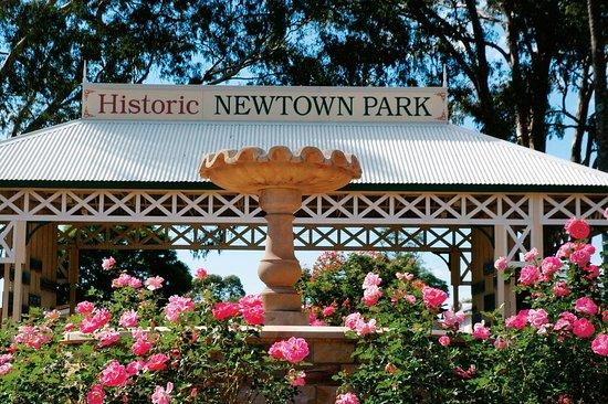 Newtown Park & Queensland State Rose Garden