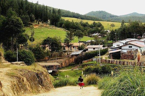 Cajamarca: Porcón farm - Private tour