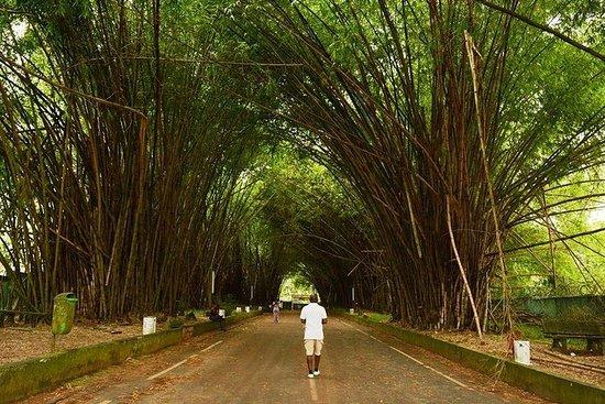 Visite du Parc National du Banco et...