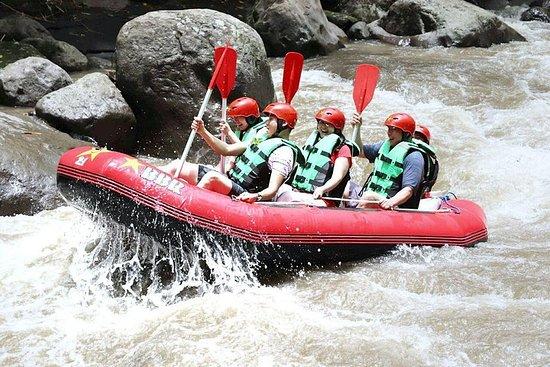 Фотография Ayung river rafting