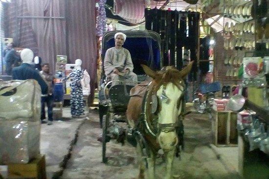 Bytur med hestevogn