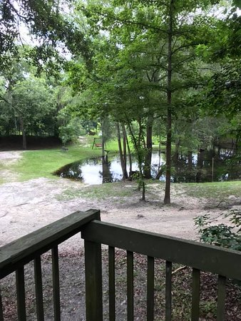 Mayo, FL: The usually beautiful clear spring pool that was all muddied and out of concrete enclosure due to river flooding.