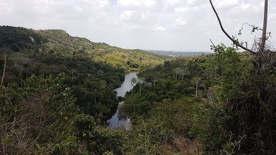 Pugu hills forest hike is perfect gateway from Dar cumbersome. A nice coastal forest with magnificent natural trails, endemic trees, natural and man-made caves and not to forget varieties of butterflies and birds species.  Kwazi team will make your hike experience unforgettable due to knowledge of the flora and fauna.  It's a nice spot to walk with the dog although you need dog's leash.