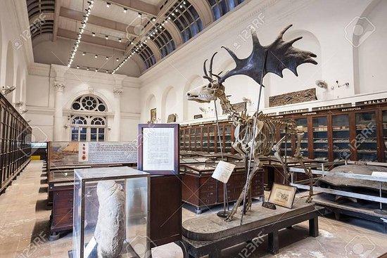 Foto de Tour al Museo Indio de Calcuta