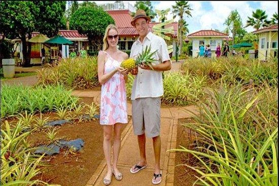 Guide to Dole Plantation, Polynesian...