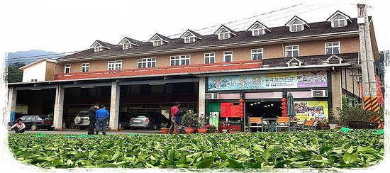 Xinshan Tea Garden