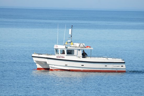 RBP Marine - Kintra Boat Tours, 발리캐슬 사진 - 트립어드바이저