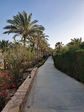 Beautiful  walk through the hotel gardens around the house reef