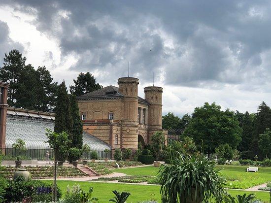 Botanischer Garten Karlsruhe Aktuelle 2021 Lohnt Es Sich Mit Fotos
