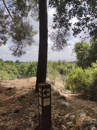 Pohjoinen hallintoalue, Israel: עין כובשים בין הישוב שלומי לחניתה