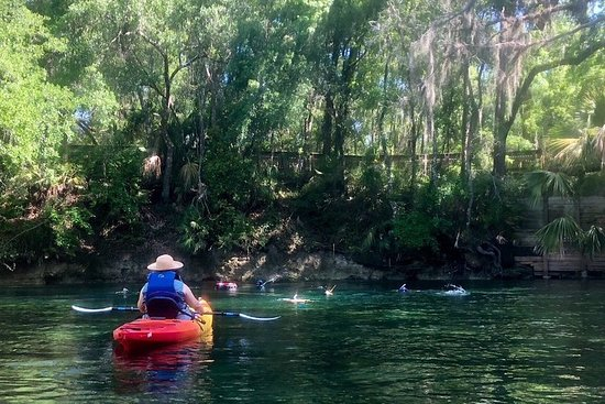 Wekiva River Guided Kayak Tour