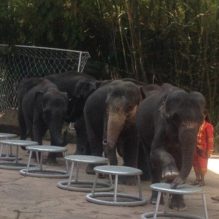 Bangkok Thailand 🇹🇭 ❤️❤️❤️❤️