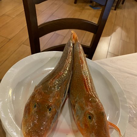 Pescato cucinato ad arte