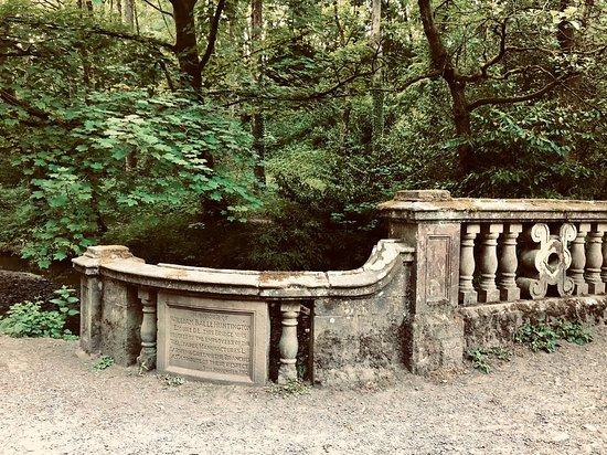Sunnyhurst Wood