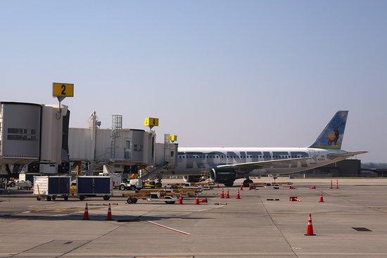 الخطوط الجوية المتحدة: UA4342 Knoxville to Houston EMB-145 (#N15574) Seat 18D - Sitting at Gate 7