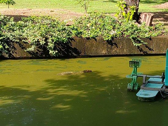 Arboretum Klongchan Park