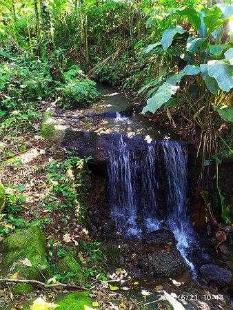 Cachoeirinha há 15min do Campo Escola de Montanhismo, trilha para a Pedra do Om.