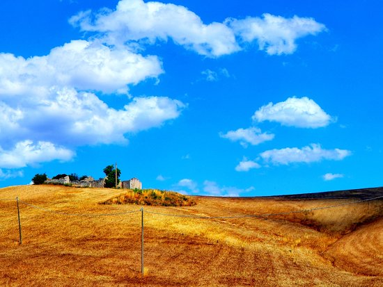 Province of Matera, Ιταλία: Che ne sai tu di un campo di grano...?! 🌾🌾🌾💕