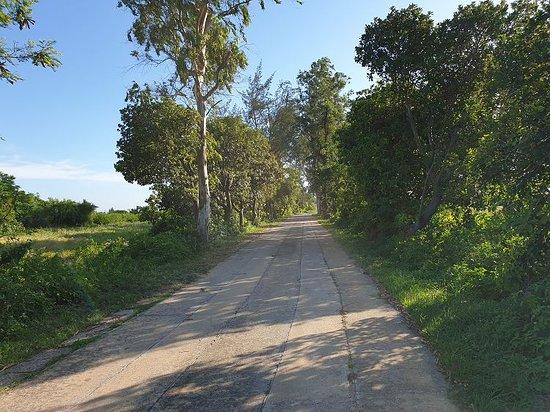 Nanshan Path