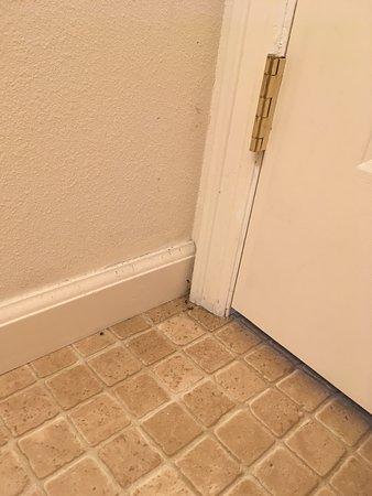 Lowman, ID: Dead bugs & hair behind bathroom door.