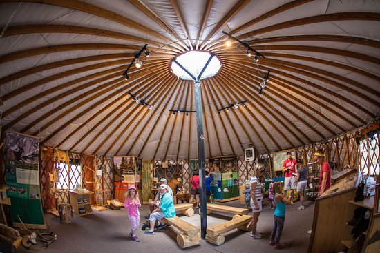 Inside the Nature Discovery Center atop Vail Mountain.