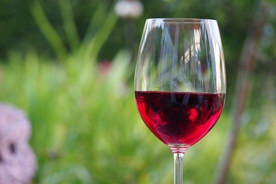 Visite de dégustation de vins de la...