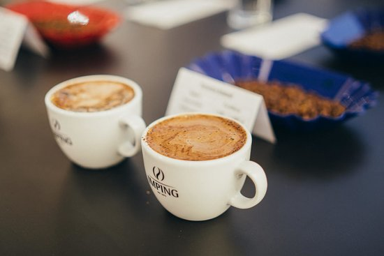 Bocholt, Almanya: Beim Cupping kann man Kaffees probieren die man sonst nicht so leicht in die Tasse bekommt