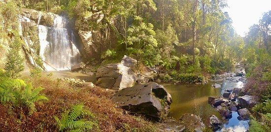 Stevensons Falls