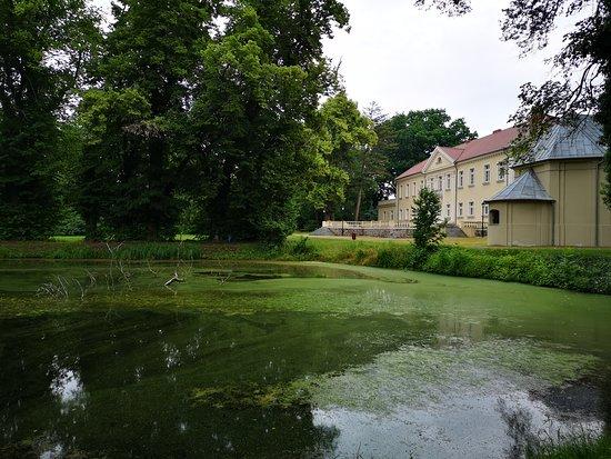Kopaszewo Palace