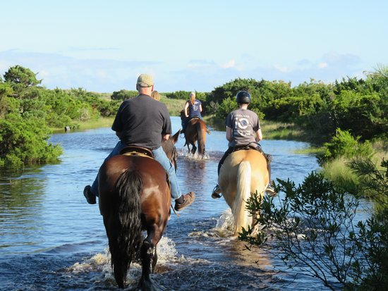 In the water-  18 year old experienced rider, 15 year old who has been on a horse 2 times, and 72 year old who rode last about 45 years ago!