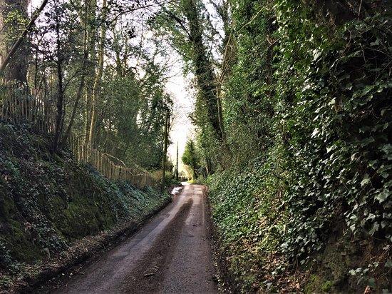 High Weald Landscape Trail