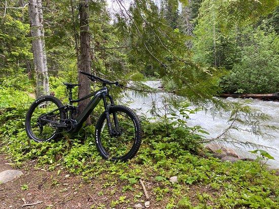 Bikes & Bites