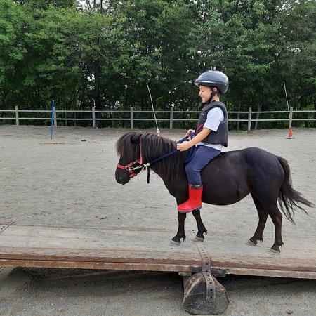 Escursioni maneggio e pony per bambini