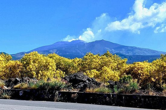 Eksklusiv MOUNT ETNA Tour - med Local Guide - starter fra Palermo