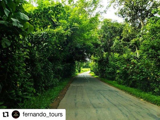 #Travel_Sri_Lanka #Travel_with_Fernando #Fernando_Tours_Hikkaduwa #Travel #Travelgram www.fernandotourshikka.com fernandotourshikka@gmail.com 0772227665(WhatsApp/Viber) 0774453134