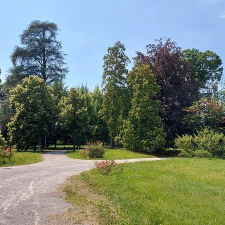 Parco di Villa Campello ad Albiate; questo parco di circa 5000 metri quadrati è aperto al pubblico ed è un posto tranquillo e rilassante. Ospita una grande varietà di alberi, tra cui faggi, tigli, ippocastani e cedri.