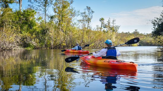 Everglades Adventures Kayak & Eco Tours