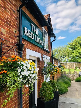 The Red Lion: A lovely sunny day.