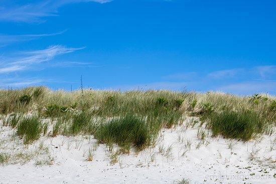 St Martin's, UK: Sand dunes on St Martins in the Scilly Isles. These small islands off the coast of Cornwall are the perfect place if you want to get away from it all. Even in summer, you've got a pretty good chance of finding a beach all to yourself!