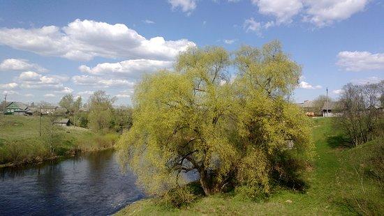 Novgorod Oblast, Ρωσία: Река Полисть. Новгородская область. Местами бурная с камнями, очень красивая. Говорят что вода целебная - местные житель пьют не опасаясь. Часто используется для туристических сплавов.